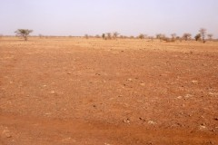 Degraded soil before land treatment